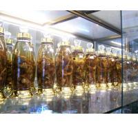 Rượu Ngọc Linh Sâm Loại 1 Lít
